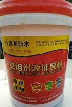 长沙抗裂型嘉龙液体牌卷材防水涂料_长沙嘉龙液体卷材防水涂膜直销