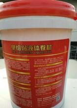 湖南嘉龙牌18公斤液体卷材防水涂膜诚招桂阳总代理