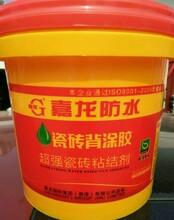 液体瓷砖背胶哪个品牌好,液体瓷砖胶,河南液体瓷砖胶品牌选嘉龙牌瓷砖背涂胶