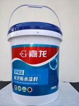 厨卫王防水涂料厨卫防水涂料价格_嘉龙快易涂厨卫防水涂料批发