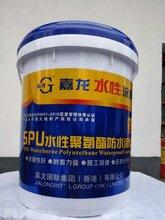 湖南水性聚氨酯防水涂料_口碑好的水性聚氨酯防水涂料嘉龙防水涂料供应图片