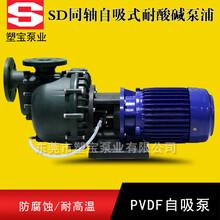 SD-40013L耐酸碱自吸泵塑宝牌同轴自吸泵图片