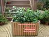 香港环保塑木花箱,商业广场花槽,木制花盆