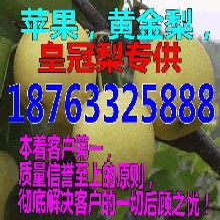 江苏无锡烟台苹果