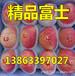 衡阳嘎啦苹果市价多少钱一斤