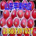和田红富士苹果一般多少钱一斤