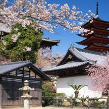 日本留学怎样才能更好的获得日本留学签证