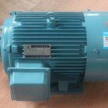 上海交流电动机回收价格,直流电动机型号,电动机回收价格,防爆电动机回收行情,异步电动机规格图片