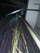 电线电缆回收,连云港电力电缆线回收加工厂,二手电缆线回收价格图片