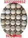 新年伊始科力普科技六喷头鸡蛋喷码机为您送上高科技的免维护鸡蛋喷码机