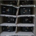 1LE1001-1DB43-4AA4-Z图片
