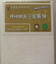 龙牌米兰花600x1200x15mm矿棉板龙牌喷砂面RH98吸音板图片