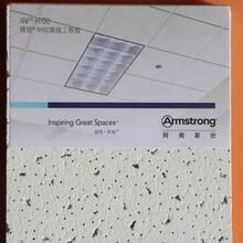 阿姆斯壯雅麗礦棉板毛毛蟲600x6001200x14吸音板圖片