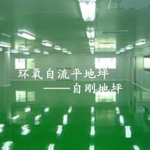 桐乡环氧地坪图片