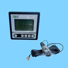 海净工业在线式ORP测定仪,ORP2000型图片