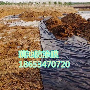 防渗膜价格鱼塘养殖膜藕池种植防水pe膜