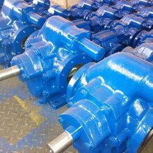 2CY1000/0.63-2齿轮油泵