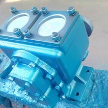 供应65YHCB-35圆弧齿轮泵,优质圆弧齿轮油泵