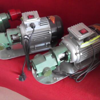 供应优质便携式220V手提式齿轮油泵