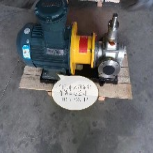 优质泊头天海泵业制造无泄漏磁力驱动的磁链齿轮泵磁力齿轮泵图片