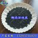 供应福州异味吸附脱色净化用椰壳活性炭各种规格活性炭厂家报价