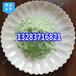 供应合肥果树种植防止黄叶病用肥料级硫酸亚铁使用特性及使用方法