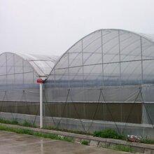 阳泉几字钢大棚骨架供应双梁钢结构温室建造