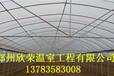 简易连体大棚建造基地忻州花卉大棚建设标准