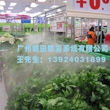 广州铭田喷雾系统供应-超实惠的超市蔬菜保鲜加湿设备图片