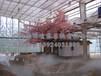 广州展览会自然人造雾,景观高压喷雾系统[造雾机]