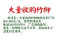 湖南大量收购竹柳600-650元/吨