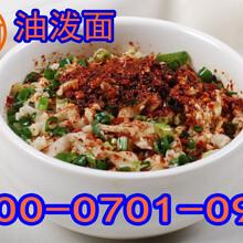 河南郑州油泼面加盟,河南油泼面加盟多少钱,郑州麦多食品有限公司豫哥油泼面加盟图片