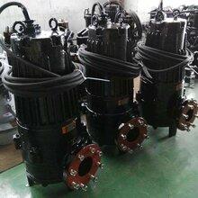 濟寧長風AS10-2CB潛水排污泵批發潛水排污泵廠家圖片