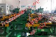 液压镦锻机250型(镦粗机/加厚机/热模锻设备)