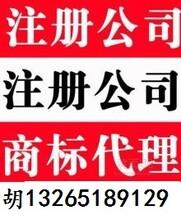 特价注册广州公司、专业代理记账、提供长期挂靠地址