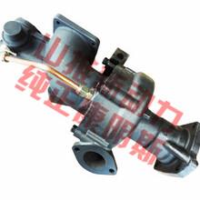 康明斯qsm11水泵3967921/4372338