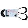 NT855发电机皮带