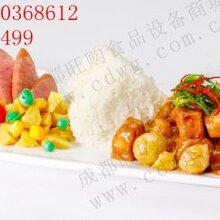 快餐调理包/方便简餐包/冷冻速食米饭半成品