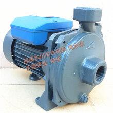 CPM-158冷水机泵单相离心泵