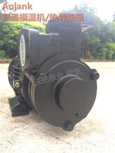 WM-30-120高温模温机专用泵2.2kw