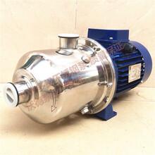 DW2-20/037不锈钢高温热水循环泵