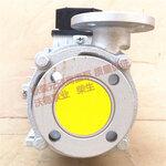 YS-20B高温模温机专用泵\\\新闻周刊