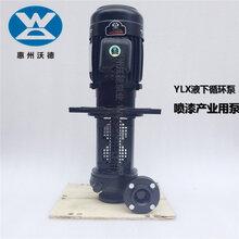 化工泵YHL2200-40耐腐蚀液下化工泵2.2kw化学医院泵