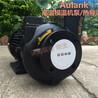 RGP-30模温机泵ALK高温热油循环泵
