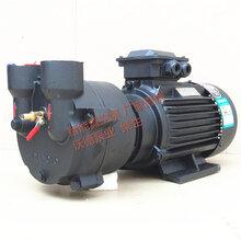 SBV-110真空泵源立水环式真空泵