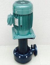 化工泵YHL3700-50液下耐腐蚀化工泵