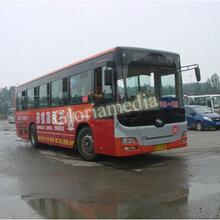 沈阳公交车广告投放效果优势如何