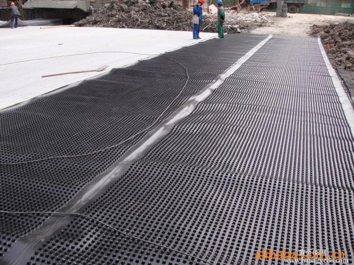 楼顶花园蓄排水板图片-绿化蓄排水板报价 厂家