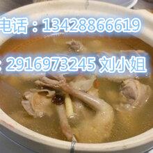广州乳鸽汤培训,乳鸽火锅的详细做法培训