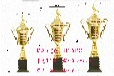 专业定制金属奖杯,足球赛奖杯,冠军奖杯,篮球赛奖杯,台球奖杯创意奖杯